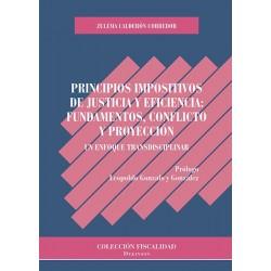 Principios impositivos de justicia y eficiencia: fundamentos, conflicto y proyección