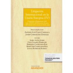 Litigación Internacional en la Unión Europea (IV)