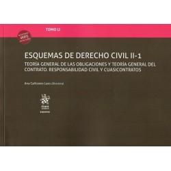 Esquemas de Derecho Civil II-1. Tomo LI
