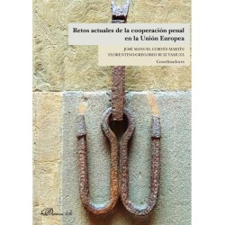 Retos actuales de la cooperación penal en la Unión Europea